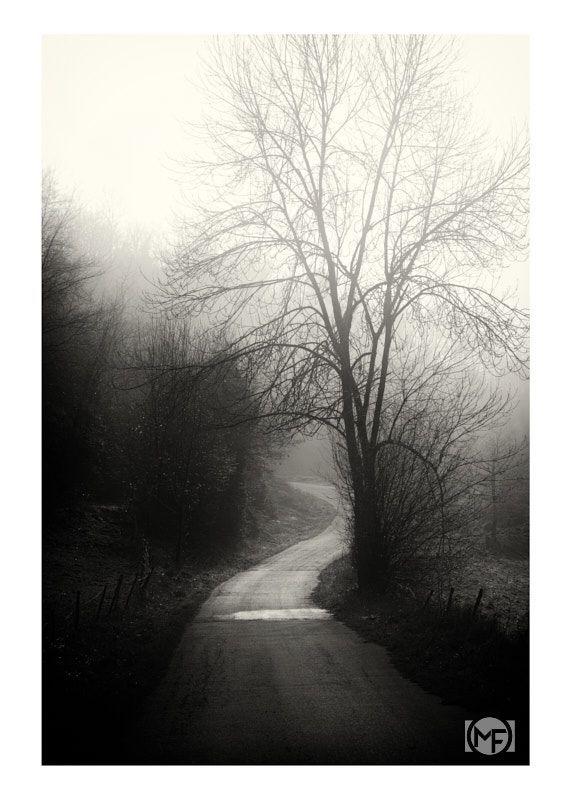 Path Of Calm